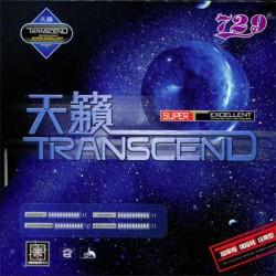 Borracha 729 Transcend - Top Ténis de Mesa